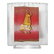 Red Box Shower Curtain