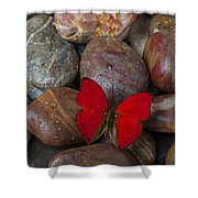 Red Butterfly On Rocks Shower Curtain