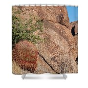 Red Cactus Rock Shower Curtain