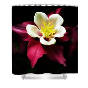 Red Columbine Shower Curtain