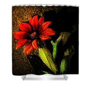 Red Coneflower Shower Curtain
