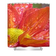 Red Craft Shower Curtain
