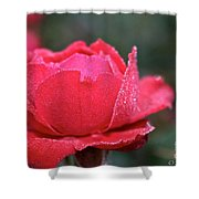 Red Crystal Petals Shower Curtain