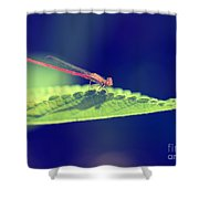 Red Damselfly Shower Curtain