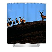 Red Deer Group Shower Curtain