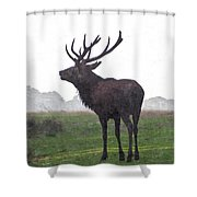 Red Deer Painting Shower Curtain