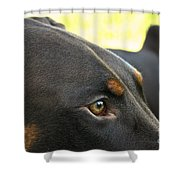 Red Dobe Shower Curtain