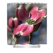 Red Dogwood Shower Curtain