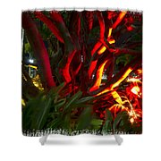 Red Entanglement Shower Curtain