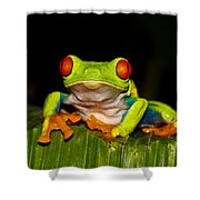 Red Eyes 1 Shower Curtain