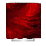 Red Feathers - 1 Shower Curtain