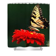 Red Flower And Butterfly Shower Curtain
