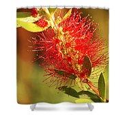 Red Flower Shower Curtain