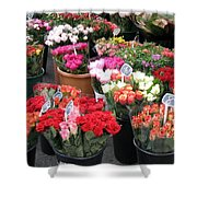 Red Flowers In French Flower Market Shower Curtain