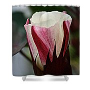 Red Foliated White Shower Curtain