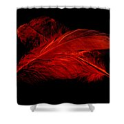 Red Ghost On Black Shower Curtain