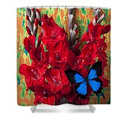 Red Gladiolus And Blue Butterfly Shower Curtain