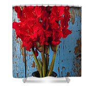 Red Glads Against Blue Wall Shower Curtain