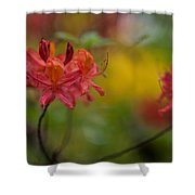 Red Groups Shower Curtain