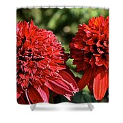 Red Head Twins Shower Curtain