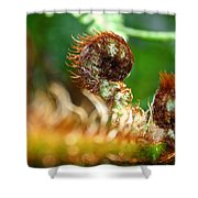 Red Heads Shower Curtain