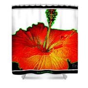 Red Hibiscus With Special Effects Shower Curtain