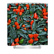 Red Hots Shower Curtain