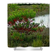 Red In Green Shower Curtain