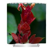 Red Inferno Shower Curtain