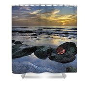 Red Leaf At Dawn Shower Curtain