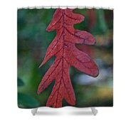 Red Leaf Hanging Shower Curtain