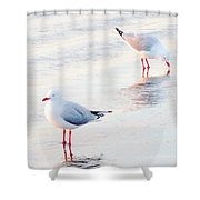 Red Legs And Lipstick Shower Curtain