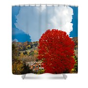 Red Maple White Cloud Shower Curtain