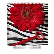 Red Mum And Red Key Shower Curtain