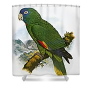 Red-necked Amazon Parrot Shower Curtain