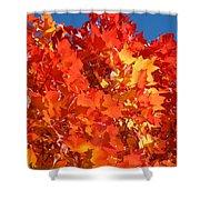 Red Orange Yellow Autumn Leaves Art Prints Vivid Bright Shower Curtain