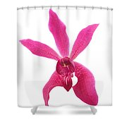 Red Orchid Head Shower Curtain
