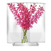 Red Orchid In Vase Shower Curtain