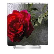 Red Paris Rose Shower Curtain