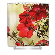 Red Petunias Shower Curtain