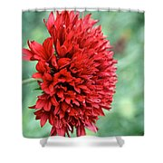 Red Plume Shower Curtain