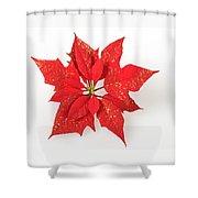 Red Poinsettia Flower Shower Curtain
