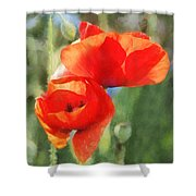 Red Poppies In Sunlight Shower Curtain