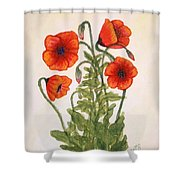 Red Poppies Watercolor Painting Shower Curtain