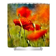 Red Poppy Flowers 01 Shower Curtain