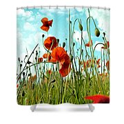 Red Poppy Flowers 03 Shower Curtain