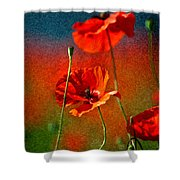 Red Poppy Flowers 08 Shower Curtain