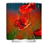 Red Poppy Flowers 08 Shower Curtain