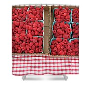 Red Raspberries Are Here Shower Curtain