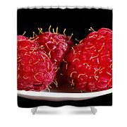 Red Raspberries On A White Spoon Against Black No.0102 Shower Curtain